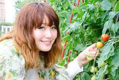 top_fukuda_tomoyo