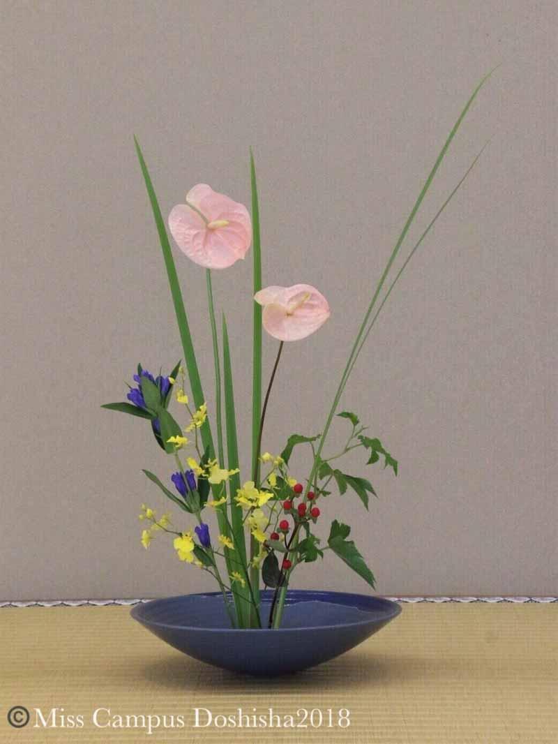 笹井千織の生け花
